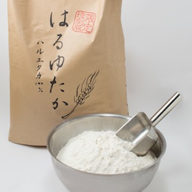 <ベーグルの素材>幻の北海道産の最高級品質小麦『はるゆたか100%』