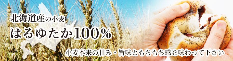 北海道産の小麦 はるゆたか100% 小麦本来の甘み・旨みともちもち感を味わって下さい